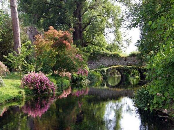 PARADISE LOST, flowers, landscape, nature, water.