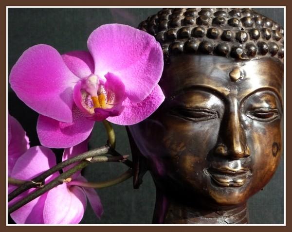 meditation D25d6eb0